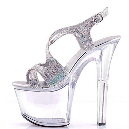 Gruesa Impermeable Llp De Parte Para High Inferior Sandalias Modelo Silver Plataforma Mujer 17cm Zapatos Transparentes Cristal Tacón Alto OrOwv