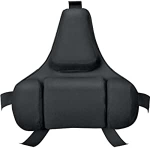 Fellowes 8037601 Professional Series Back Support, Black