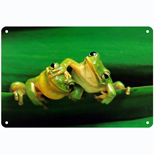 CoolMailboxicoveriw Funny Frogs Vintage Metal Sign Wall Plaque Poster for Cafe Bar Pub Beer Club Wall Home Decor 8 12 ()