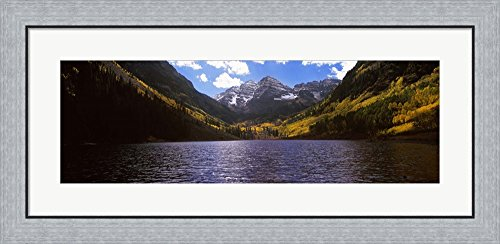 Trees in a forest, Snowmass Wilderness Area, Maroon Bells, Colorado, USA by Panoramic Images Framed Art Print Wall Picture, Flat Silver Frame, 35 x 17 (Wilderness Area Framed)
