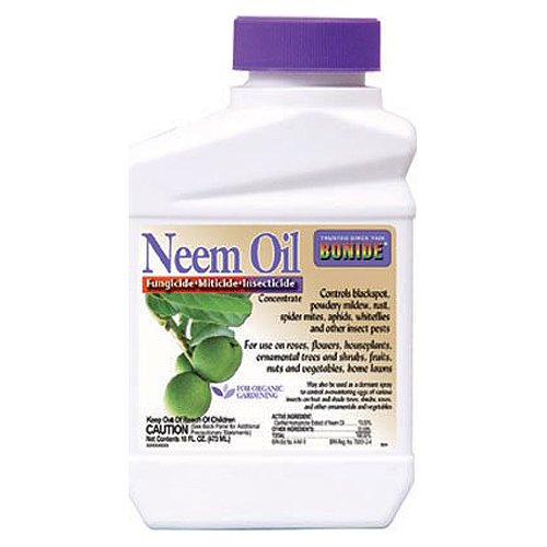 Bonide 024 Concentrate Neem Oil Insect Repellent 16-Ounce