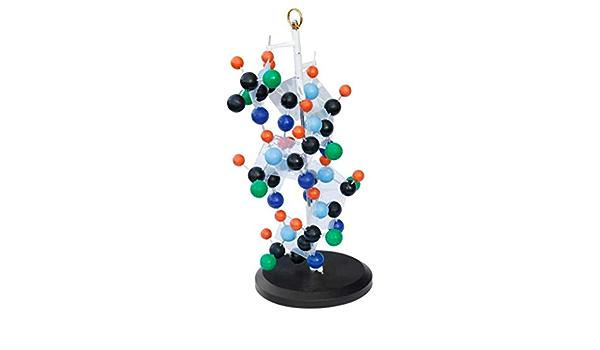 WEHQ Tipo de Barra Proteína Modelo de Estructura Secundaria ...