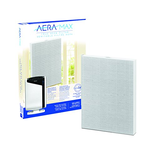 AeraMax 300 Air Purifier True HEPA Authentic Replacement Filter with AeraSafe Antimicrobial Treatment (9287201) by Fellowes