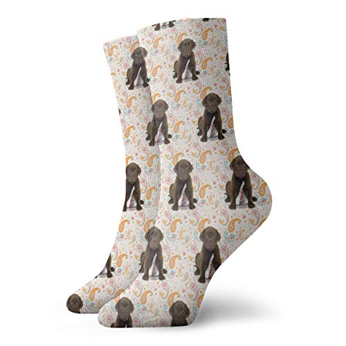 Novelty Cool Crazy Funny Dress Socks - Puppy Chocolate Lab Kisses Socks - Gifts for Men & Women