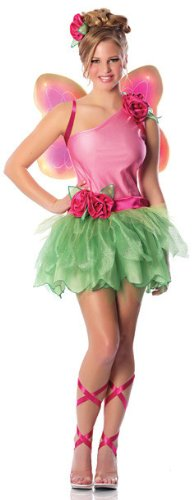 Delicious Rose Fairy Costume, Pink/Green, Small (Pink Wings Club Fairy)