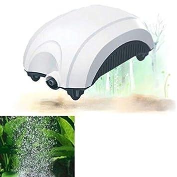 Fast World Shopping - Ventilador externo para acuario, bomba de aire oxigenadora de 1,6 l/min: Amazon.es: Hogar
