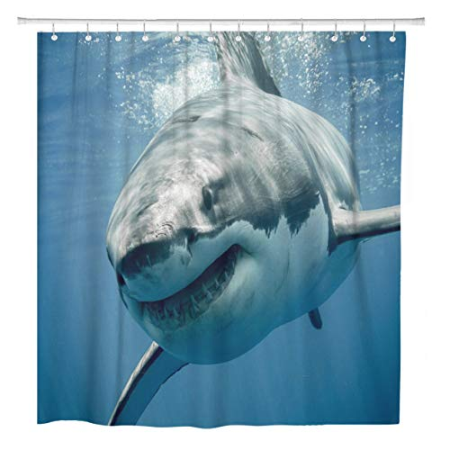 (ArtSocket Shower Curtain Blue Threat Great White Shark Smiling Predator Smile Face Home Bathroom Decor Polyester Fabric Waterproof 60 x 72 Inches Set with Hooks)
