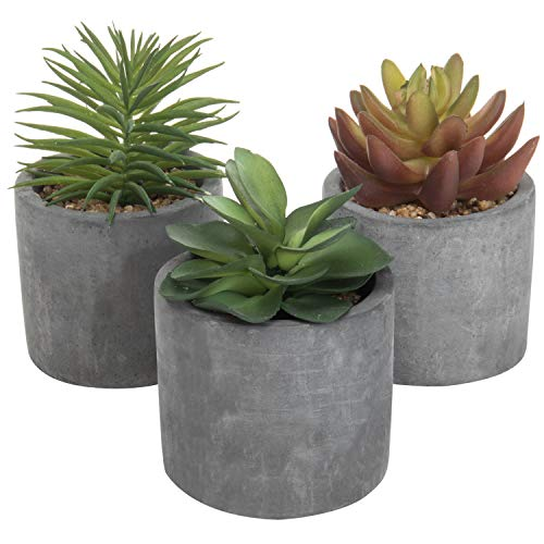 Planter Assortment - MyGift 5-Inch Artificial Succulent Plants in Cement-Gray Cylinder Planters, Set of 3 (Assortment 3)