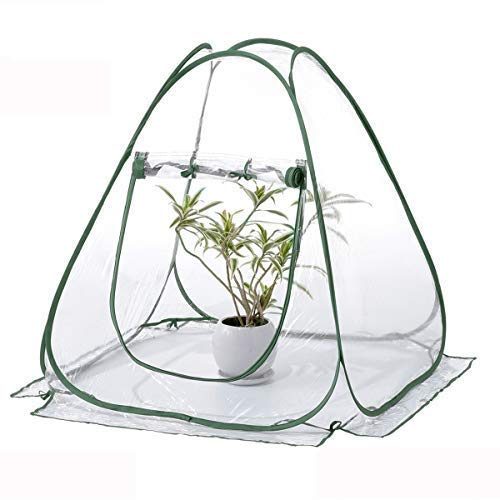 TECHSON Mini Pop-up Greenhouse with Clear Cover Protected Plant Grow House, Portable Flower Tent Shelter for Garden Outdoor Backyard ()
