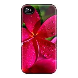 Hard Plastic Iphone 6 Case Back Cover,hot Red Plumeria Flowers Case At Perfect Diy