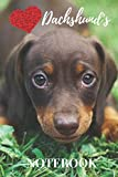Dachshund Notebook: cute dachshunds pets gift for