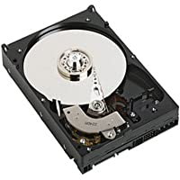 Western Digital WD Caviar RE WD1600YD 160GB Internal SATA Hard Drive - WD1600YD