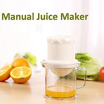 Paleo Juguera casera manual de la mini fruta del limón herramienta de cocina exprimidor de naranjas bricolaje: Amazon.es: Hogar