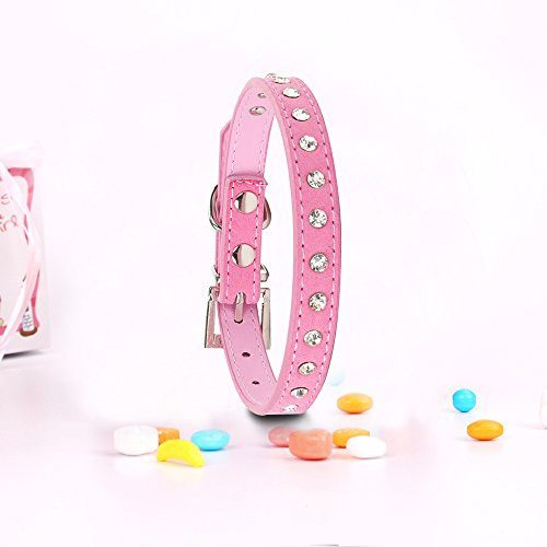 extra small neon dog collar - 3