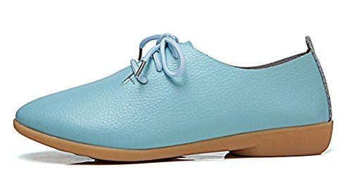 Classic Blue Shoes Oxford Sky Women's VenusCelia Flats 5nwYavE