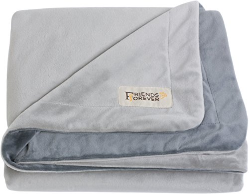 Friends Forever Deluxe Dog Blanket/Throw - 100% Pure Crystal Velvet, Soft Warm Fleece Pet Blanket for Dogs Cats Bed Couch Crate Kennel Car Trunk, Medium