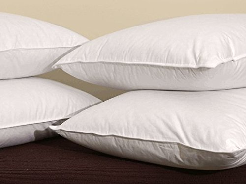 Pacific Coast Hospitality Tria Super Standard Size 4-Pillow Set With 4 Super Standard Size Pillowtex Pillow Protectors