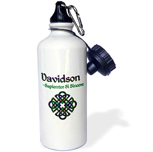 - 3dRose Macdonald Creative Studios - Celtic - Celtic Knot in The Tartan Colors for Davidson Clan and Family Motto - Flip Straw 21oz Water Bottle (wb_318241_2)