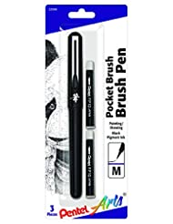Pentel Arts Pocket Brush Pen, Includes 2 Black Ink Refills (G...