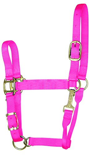 Hamilton Adjustable Chin Halter - Hamilton 1-Inch Nylon Adjustable Quality Halter with Chin Snap for 500 to 800-Pound Horse, Small, Hot Pink