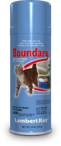 Lambert Kay Boundary Indoor/Outdoor Cat Repellent Aerosol Spray, 14-Ounce by Lambert Kay by Lambert Kay