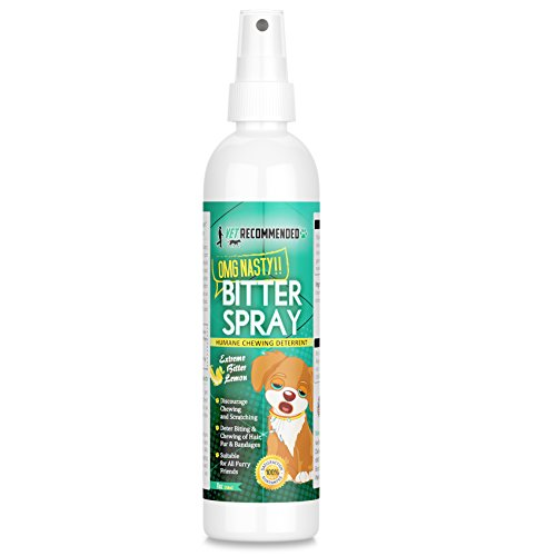 Vet Recommended - Bitter Lemon Spray for Dogs - OMG Nasty - Anti Chew Dog Repellent Spray & Dog Training Tool to Stop Biting - Alcohol Free, Non-Toxic and Safe Chewing Deterrent. (8oz/240ml) (Best Things For Dogs To Chew On)