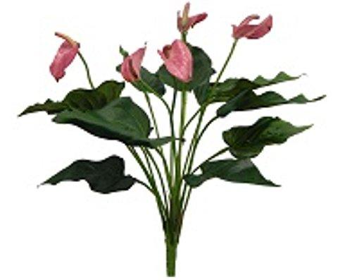 16-Anthurium-Bush-Wedding-Flowers-Home-Party-Decor