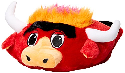 NBA Chicago Bulls Feetoes Mascot Foot Pillow, One Size, Team Color Chicago Bulls Pillow