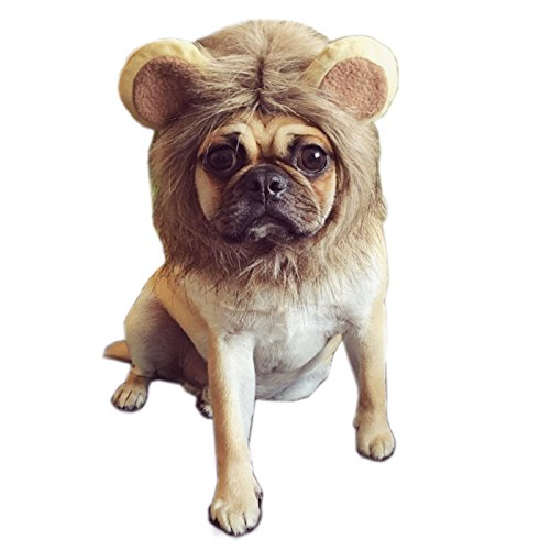 [Alfie Pet by Petoga Couture - Glaw Lion Mane Wig Costume for Dogs and Cats - Size: Small] (Make Lion Costume For Dogs)