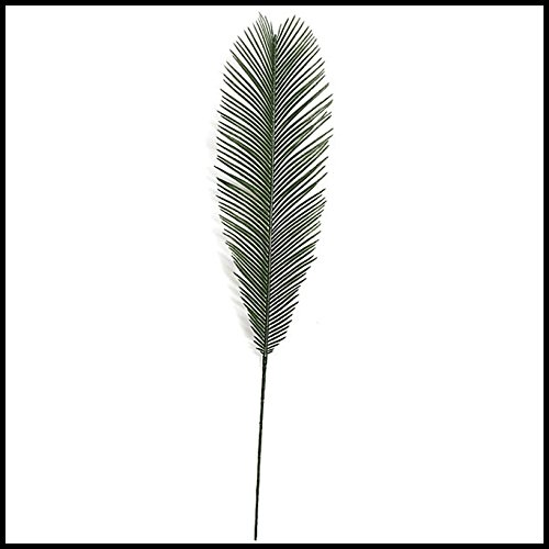Cycas Palm Branch - 44