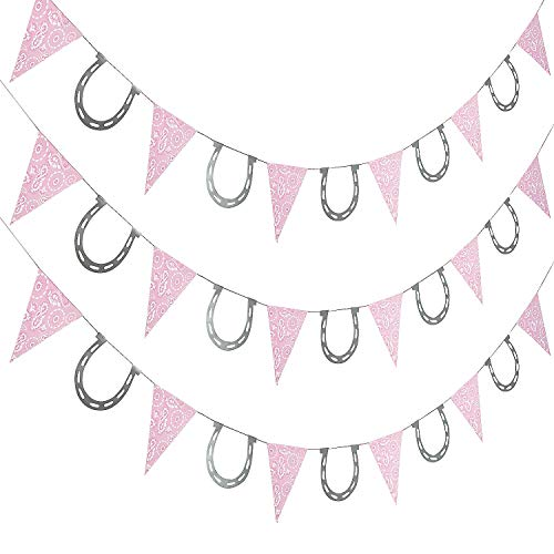 Fun Express - Pink Cowgirl Pennant Banner for