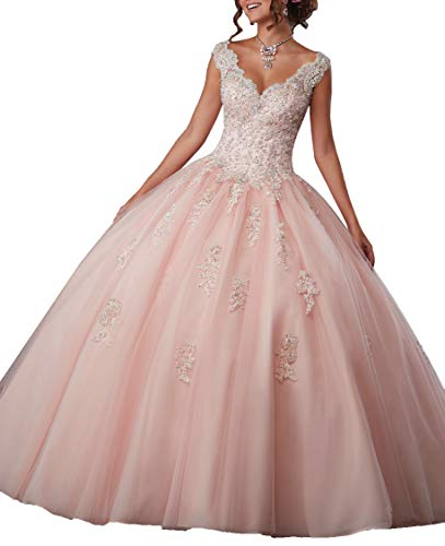 EileenDor Women's Embroidery and Beading V Neck Sleeveless Quinceanera Dresses 15 Dresses Sexy Open Back Formal ()