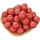 808青果店 熊本県 他 とってもあま~い トマト 1箱 約4kg 低農薬・特別栽培農産物