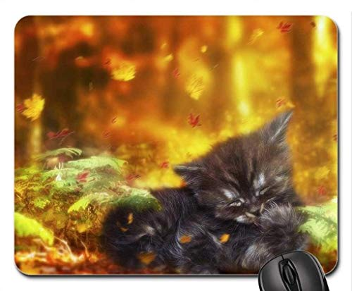 (Cats Mouse Pad),Naughty Autumn Mouse Pad, Mousepad ()