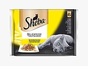 Multipack de 4 bolsitas Delicatezze para gatos de selección de aves en gelatina | [Pack de 13]: Amazon.es: Productos para mascotas