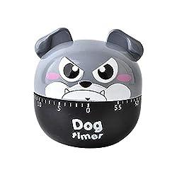Yu2d Timer Plastic Machine Timer 60 Min Alarm Clock Kitchen Stopwatch Kitchen Tools (GY)