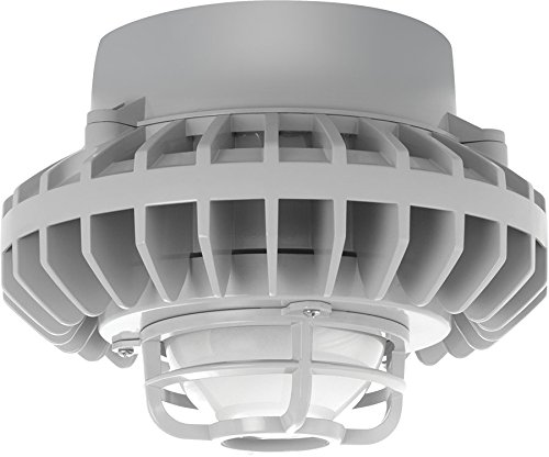 RAB HAZPLED26F-DG HAZLED 26W Cool LED Pendant w/Frosted Globe and Die-Cast Guard, 5100K, Gray