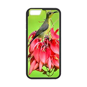 IPhone 6 Plus Bird Phone Back Case Art Print Design Hard Shell Protection LK038678