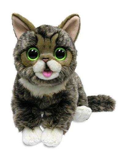 Cuddle Barn Lil Bub Adorable Kitten Cat Plush Toy, CB8240 (Little Toy Cat)
