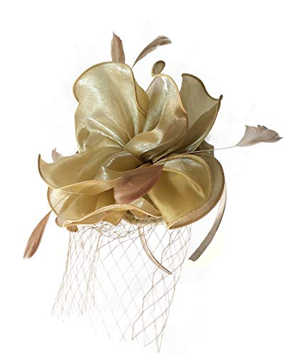 Women Feather Mesh Net Fascinator Hat with Hair Clip Wedding Cocktail Tea Party Derby Headband Ladies Day Race Royal Ascot (C Serials)