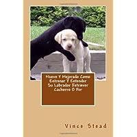 Nuevo Y Mejorado Como Entrenar Y Entender Su Labrador Retriever Cachorro O Per (Spanish Edition