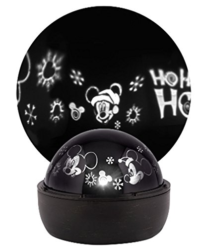 Minnie Mouse Outdoor Christmas Lights in US - 2