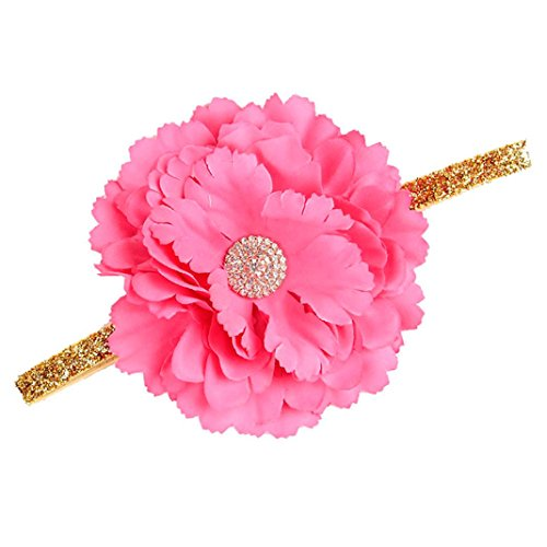 Gold Plated Rosette (Vibola Toddler Flower Headband Hair Band Accessories Baby Headwear (Hot Pink))
