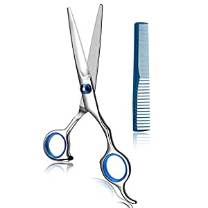 Coolala Stainless Steel Hair Cutting Scissors 6.5 Inch Hairdressing Razor Shears Professional Salon Barber Haircut Scissors, One Comb Included, Home Use for Man Woman Adults Kids Babies