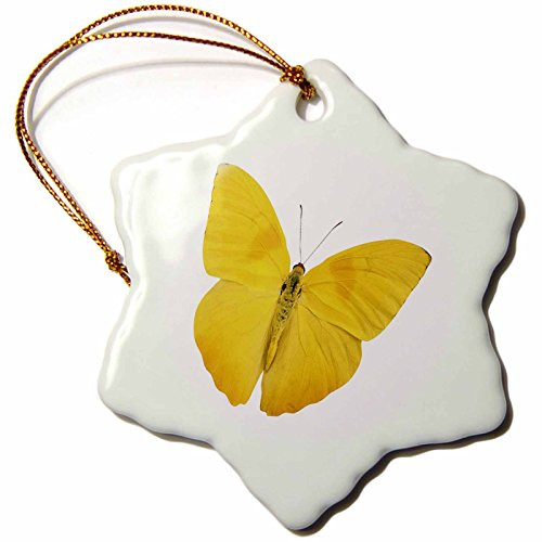 - 3dRose orn_33264_1 Butterfly Yellow Snowflake Decorative Hanging Ornament, Porcelain, 3-Inch