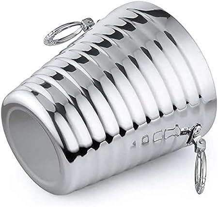 XIXIDIAN Cubo de Hielo Aislado - Cubo de refrigerador de la Botella de Vino de la Botella de Vino Blanco, con Aislamiento Cubierta de Hielo de Cerveza de Champagne (Size : 2l)