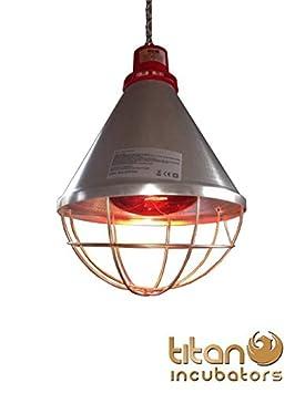 lampes chauffante