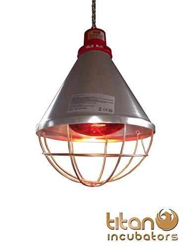 4 opinioni per Titan Incubators Lampada riscaldante e lampadina da 175W