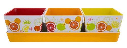 Disney Parks Citrus Mickey Icon Appetizer 4 Piece - Parks Four Disney