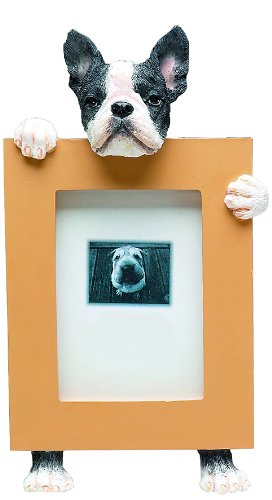 Amazon.com: Boston Terrier Picture Frame Holds Your Favorite 2.5 by ...
